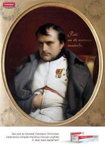 Canespor napoleon